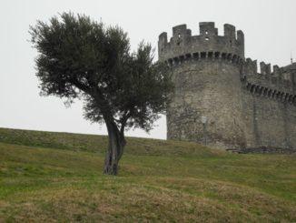 I tre Castelli di Bellinzona