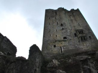 A castle with a stone and poison garden