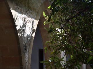 Chrysorrogiatissa – shadows, Mar.2015