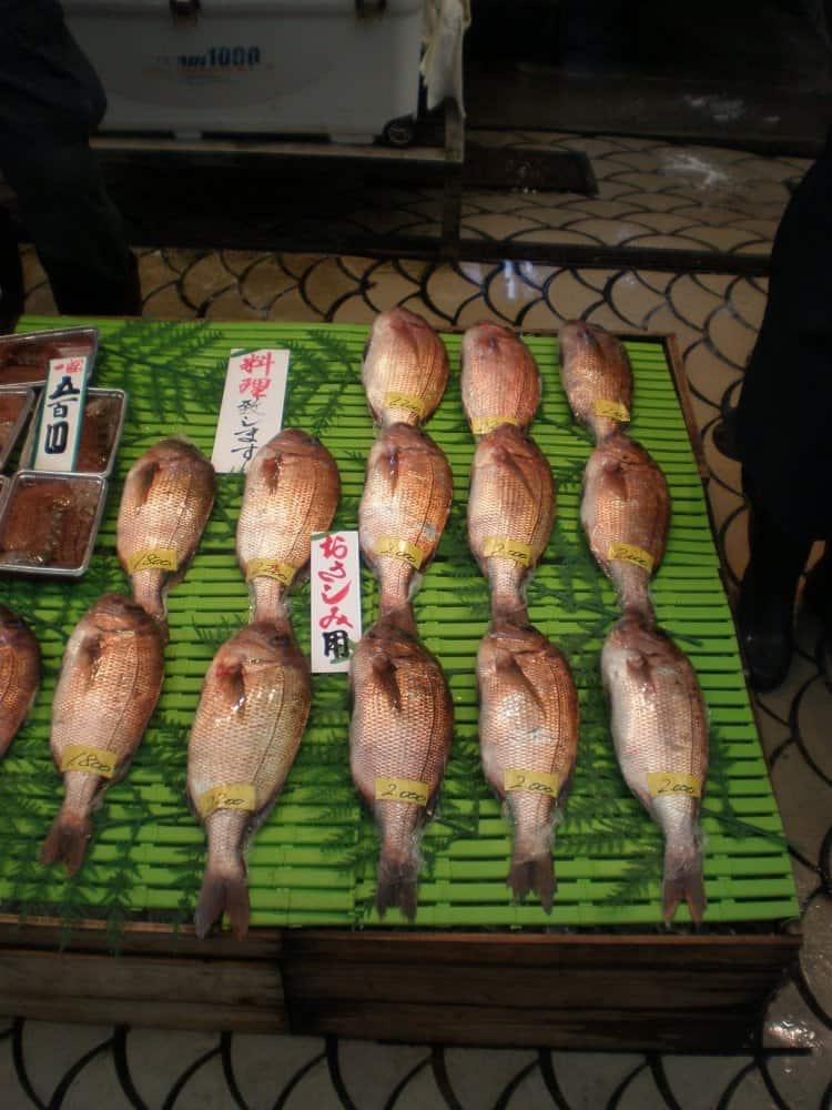 La bella città di Akashi