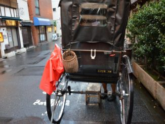 Japan, Tokyo – end of the journey, Aug.2014