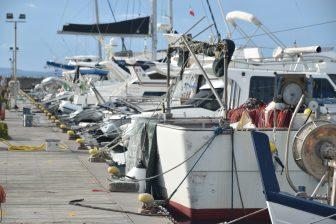 Italy-Sardinia-Stintino-port-boats