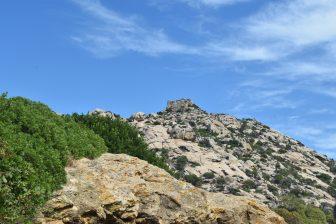 Asinara-castello
