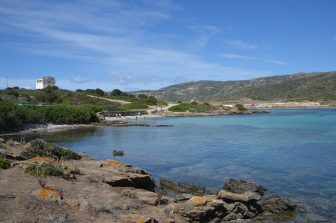 Asinara-hora-de-bañarse-excursión-isla-Cerdeña