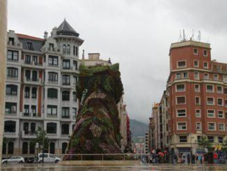 Spagna, Bilbao – cane, mag. 2014