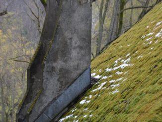 Romania, Bran – leaning, Apr.2014
