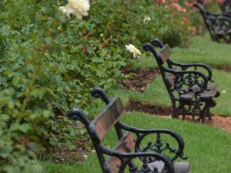 Palermo – benches in the garden, Jan.2016