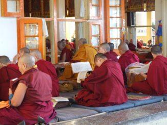 India, Dharamsala – study, Sept.2006