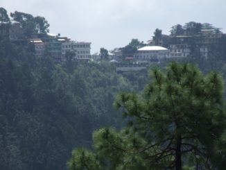 India, Dharamsala – houses on the hill, Sept.2006