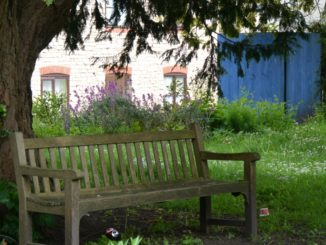 Dorchester – bench, May 2015