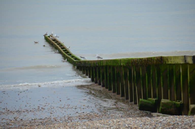 Inghilterra, Eastbourne – verso il mare, lug. 2014 (Eastbourne)