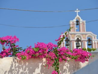 Greece, Santorini, Fira – flowers and church, Aug. 2013