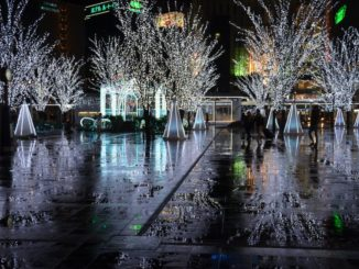 Japan, Fukuoka – Xmas light 1, Jan.2014