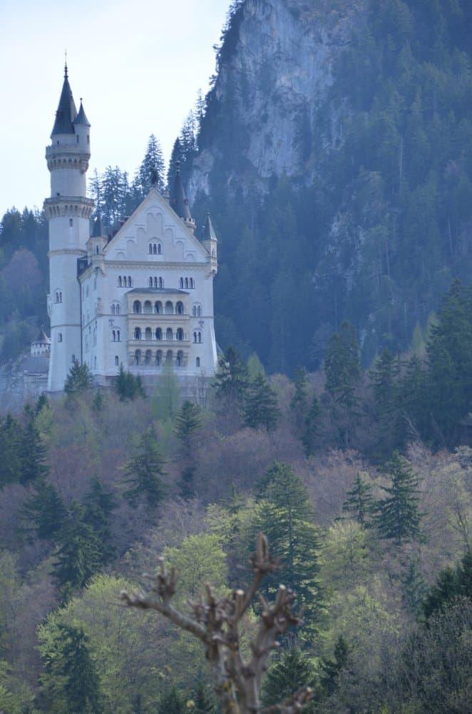 El bien conocido Swan Castle