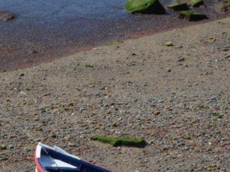 Spain, Getxo – boat on the waterside, May 2014