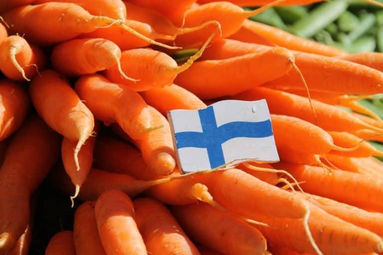 フィンランド-ヘルシンキ