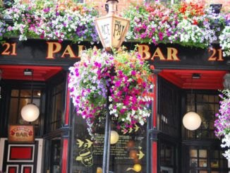 Ireland, Dublin – flowery pub, July 2011