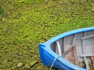 Ireland, Galway – a blue boat, 2011