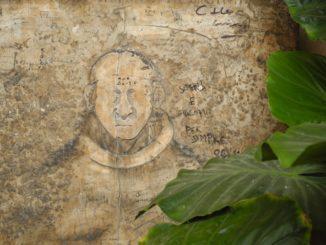 Italy, Padua – face 2011