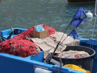 イタリア、モノポリ-漁師の色 2013年4月