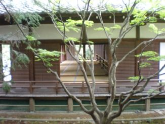 Japan, Kyoto – Tatami between the branches, Apr. 2013