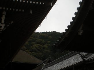 Japan, Kyoto – between the roofs, Apr. 2013