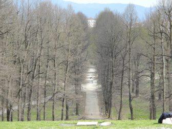 parco-castello-della-mandria-venaria