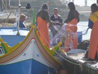 Malta, Marsaxlokk – workers, Feb. 2013