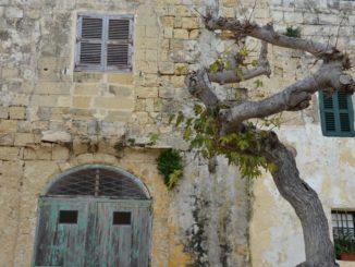 Malta, Mdina – beautiful decay, Feb. 2013