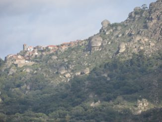 Portugal, Monsanto – on the slope, Nov.2014