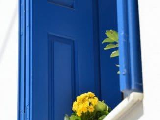 Greece, Naxos – yellow flowers, Aug.2013