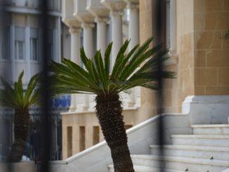 Archbishop's Palace – trees, Mar.2015
