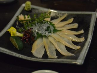 Japan, Tokyo – conger 3, Aug.2014