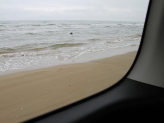Chirihama – car on the beach, Mar.2016