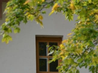 Lithuania, Palanga – leaves and window, Sept.2014