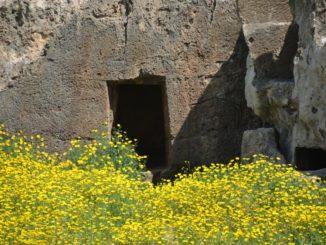 Paphos – ruins in spring, Mar.2015