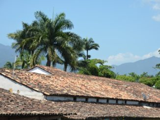 town – roof and trees, Jan.2016