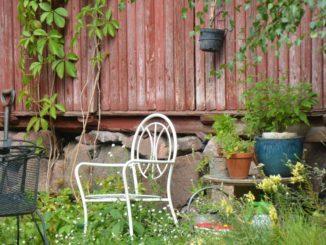 old town – garden, Aug.2015