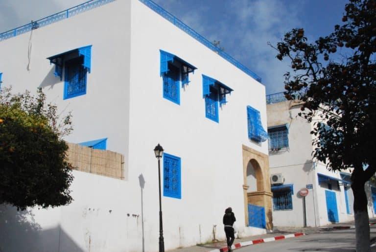 チュニジア、シディ・ブ・サイド-通り 2008年12月 (チュニス)
