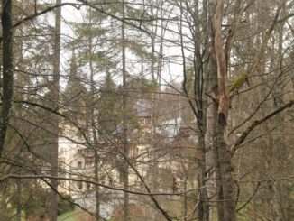 Romania, Sinaia – behind trees, Apr. 2014