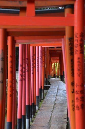 Tokyo – Nezu Shrine, red Torii gates, Aug.2016
