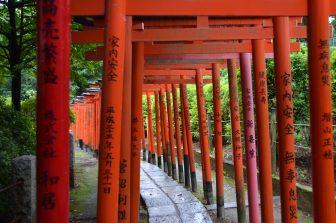 Tokyo – Nezu Shrine, many Trii gates, Aug.2016