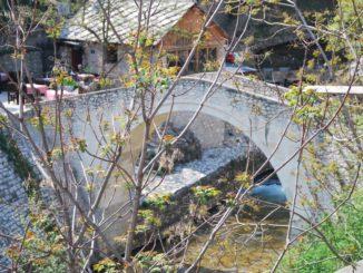 Mostar – branches and bridge, Apr. 2009