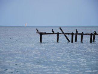 Cuba, Playa Ancon – horizon, spring 2010