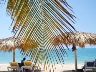Cuba, Playa Ancon – leaf and parasols, spring 2010