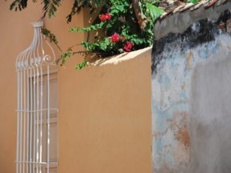 Cuba, Trinidad – fence and flowers, spring 2010