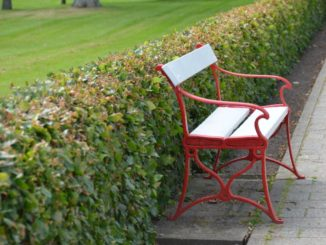 Denmark, Ribe – red and white bench, July2012