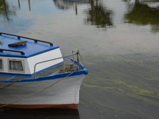 Denmark, Ribe – boat, July2012
