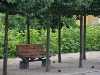 Denmark, Ribe – bench among trees, July2012