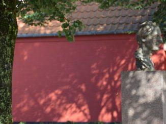 Denmark, Ribe – shadow of tree, July2012